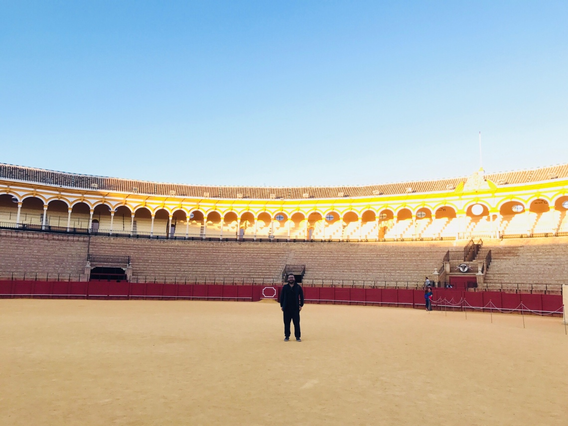The beautiful sun-lt arena.